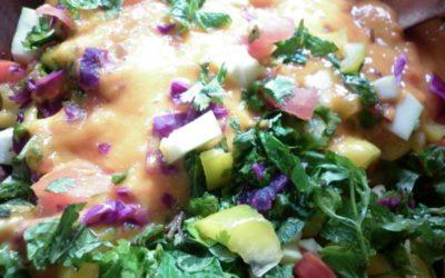 Rainbow Salad with Mango or Papaya Salsa Dressing